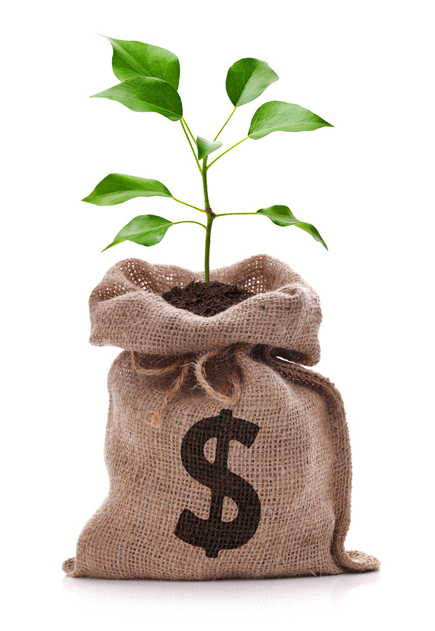 Money bag with dollar sign and money tree growing out of top iso